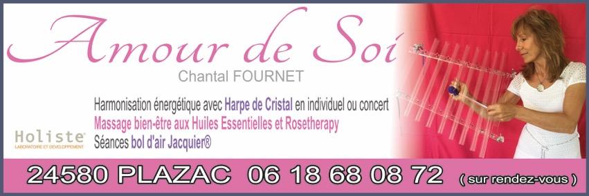 Chantal Fournet - harmonisation énergétique sonore via la harpe de cristal